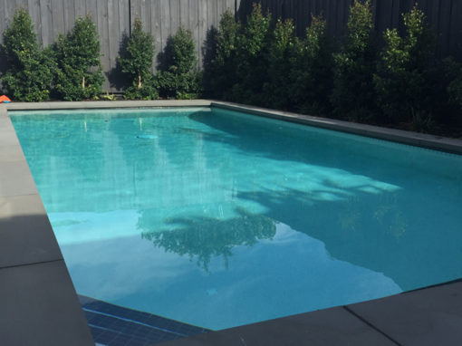 Waterline pool tiles – Caulfield